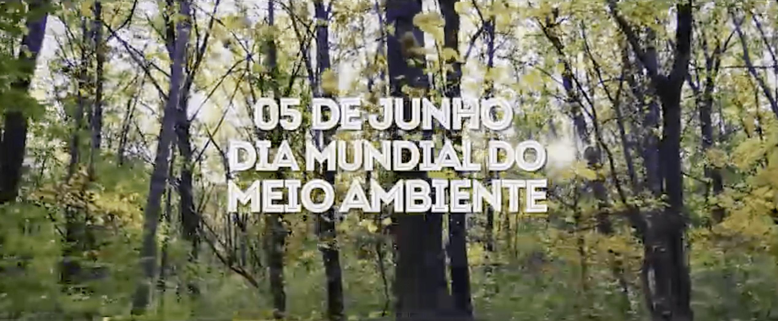 Dia do Meio Ambiente: Moto Honda lança iniciativa de valorização da floresta
